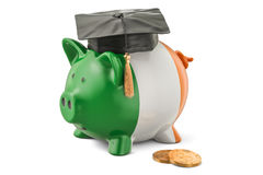 Savings for education in Ireland concept, 3D rendering Stock Photo