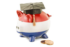 Savings for education in Netherlands concept, 3D rendering Royalty Free Stock Image