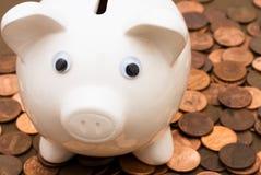 Savings Growth Stock Photo