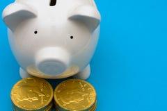 Savings Growth Royalty Free Stock Photos