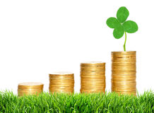Savings, increasing columns of gold coins and green clover leaf Royalty Free Stock Images