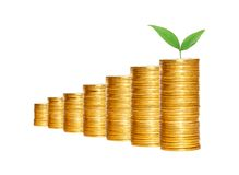Savings, increasing columns of gold coins and green plant Royalty Free Stock Images