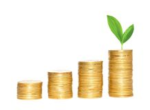 Savings, increasing columns of gold coins and green plant Royalty Free Stock Photo