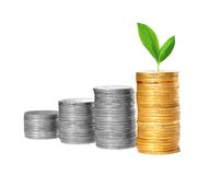 Savings, increasing columns of gold and silver coins Stock Images