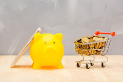 Savings money for buying a house or shopping, piggy bank concept. Royalty Free Stock Photography