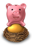 Savings Nest Egg Royalty Free Stock Photo