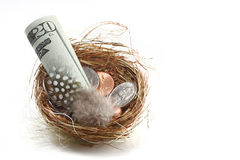 Savings and personal dreams. Signified by a nest egg filled with dollar bills and coins; white background stock image