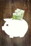 Savings pieniądze w euro Obrazy Stock