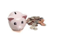 Savings piggy bank Stock Photo