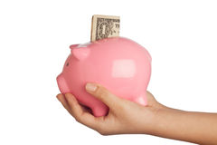 Savings in piggy bank Stock Photo