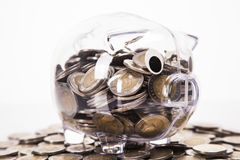 Savings in piggy bank! A lot of money! Stock Images