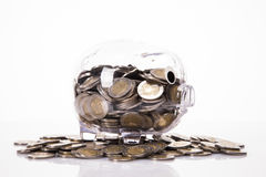 Savings in piggy bank! A lot of money!. Isolated on white background Royalty Free Stock Photos