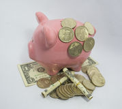 SAVINGS IN THE PIGGY BANK Stock Photo