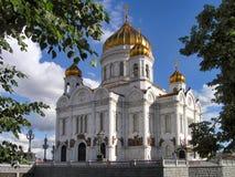 savior Χριστού καθεδρικών ναών Στοκ φωτογραφίες με δικαίωμα ελεύθερης χρήσης