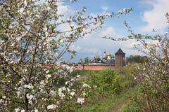 The Saviour Monastery of St. Euthymius Royalty Free Stock Photo