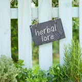 Savoir de fines herbes Photos stock