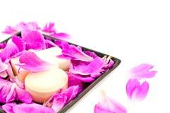 Savon blanc dans des pétales roses de fleur Photos stock