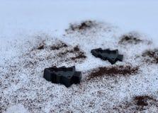Savon fait main de café avec les herbes, arbres dans la neige blanche photo stock