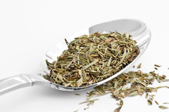 Savory. Spoon full of savory seasoning royalty free stock image