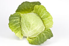 Savory Cabbage Stock Image