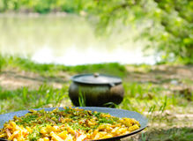Savory chips and herbs on a barbecue Stock Photography