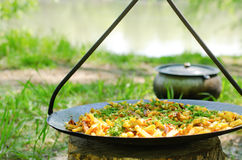 Savory chips and herbs on a barbecue Stock Photos