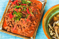 Savory curry with beef Stock Image