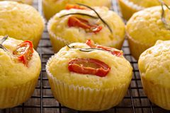 Savory muffins with corn flour Stock Photography