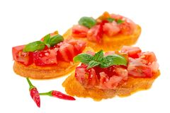 Savory tasty chopped tomato on toasted baguette garnished with b royalty free stock photography