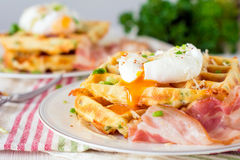 Savory waffles with bacon, egg and cheese Royalty Free Stock Photos