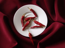 Savour. Red spicy peppers on a snow white plate in the middle of a bordeaux silk cover Royalty Free Stock Photography