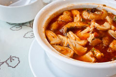 Savoury curry med fisken och akacian Arkivfoto