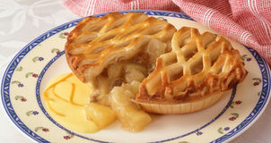 Savoury pie Royalty Free Stock Photo