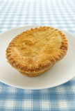 Savoury Pie royalty free stock images