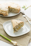 Savoury pie with ricotta cheese and artichokes Royalty Free Stock Photo
