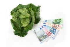 savoy евро капусты Стоковая Фотография
