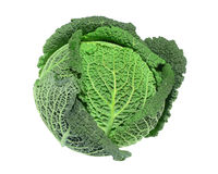 Savoy cabbage. A savoy cabbage isolated on white Royalty Free Stock Images