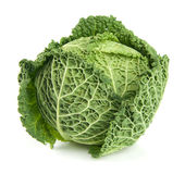 Savoy cabbage. Ripe Savoy Cabbage Isolated on White Background Stock Photos
