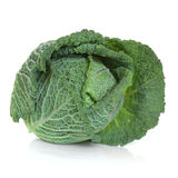 Savoy Cabbage. Isolated over a white background Royalty Free Stock Images