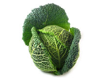Savoy Cabbage. Isolated on white background Royalty Free Stock Photo