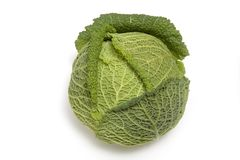 Savoy Cabbage Royalty Free Stock Photo