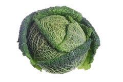 Savoy Cabbage. Fresh organic Savoy Cabbage isolated on white Stock Photos