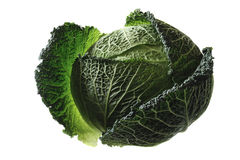 Savoy cabbage. Head of fresh Savoy cabbage, isolated on white background Stock Images