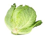 Savoy cabbage Royalty Free Stock Image