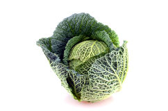Savoy Cabbage Stock Photo