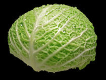 Savoy cabbage Royalty Free Stock Photos