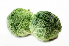 Savoy Cabbage. The Savoy Cabbage is a variety in the genus Brassica Royalty Free Stock Photography