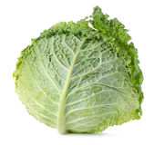 Savoy cabbage  Royalty Free Stock Photos