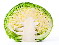 Savoy cabbage. Cross section isolated on white background Stock Photos