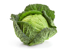 Savoy cabbage. Whole head of savoy cabbage over white background Stock Photos